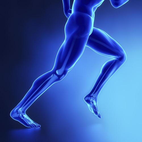 银色世纪集团提醒:人到中年,骨骼健康不容忽视